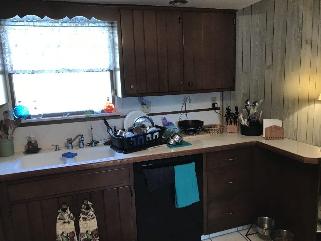 Allen Kitchen Remodel Before Sink